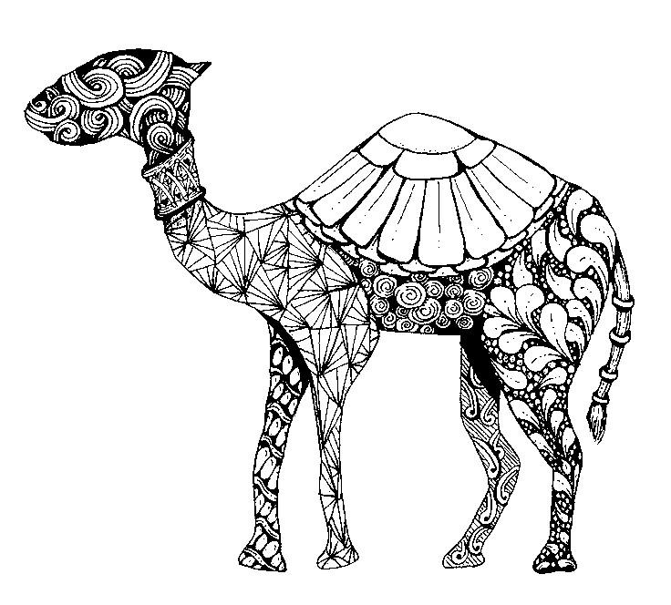 Ausmalen Erwachsene arabische welt : Kamel 9