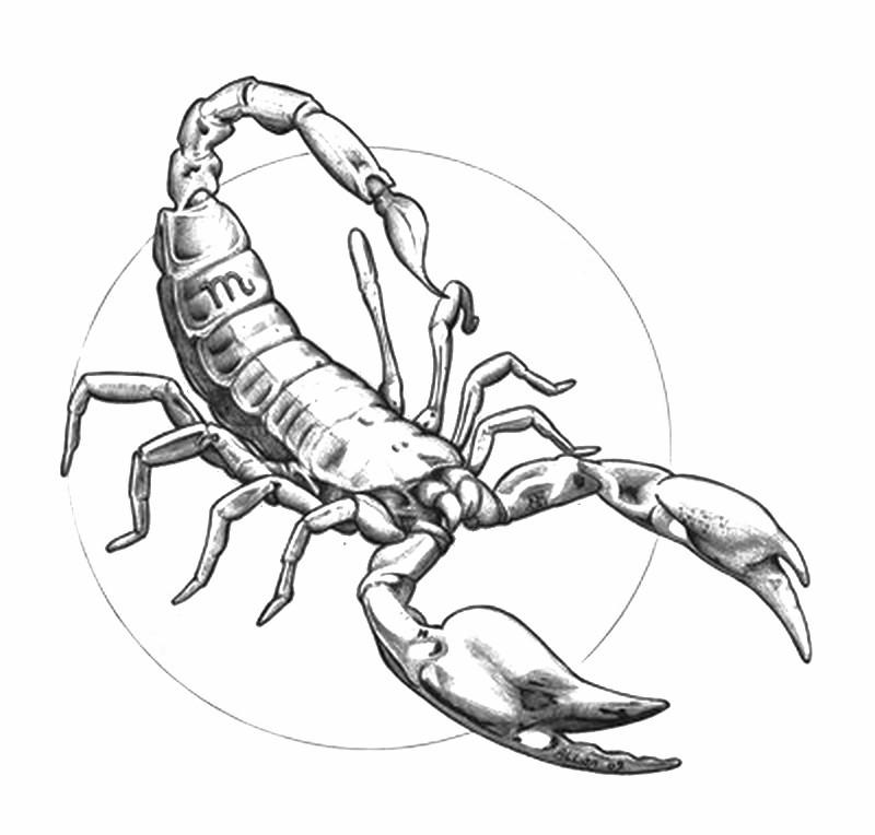 Ausmalen Als Anti Stress Astrologie Skorpion 7