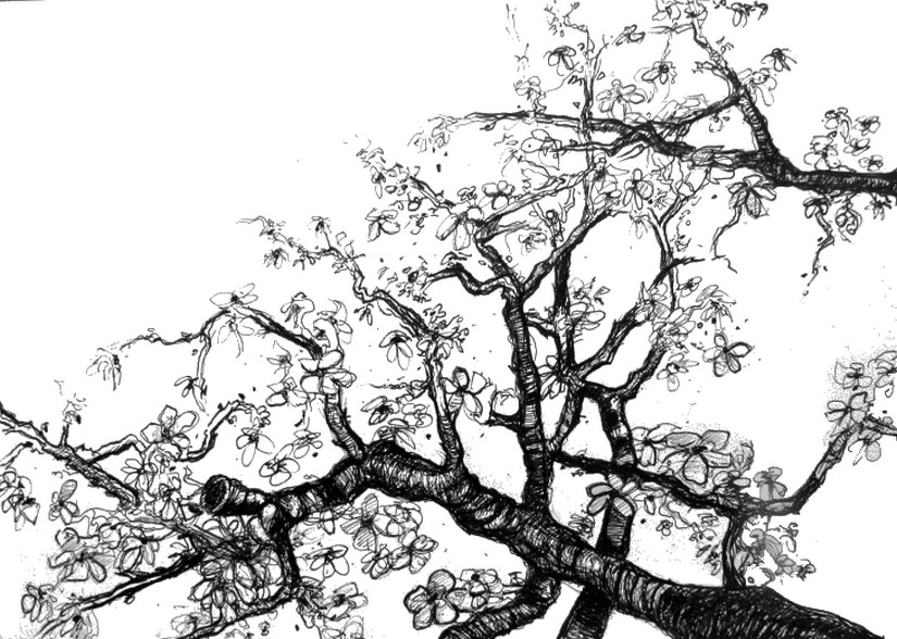 Art Therapy Coloring Page Van Gogh Branches In The Manner Of Van Gogh 8
