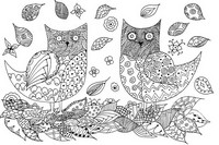 Adult coloring page Owls
