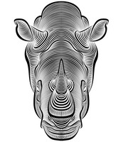 Adult coloring page Rhinoceros