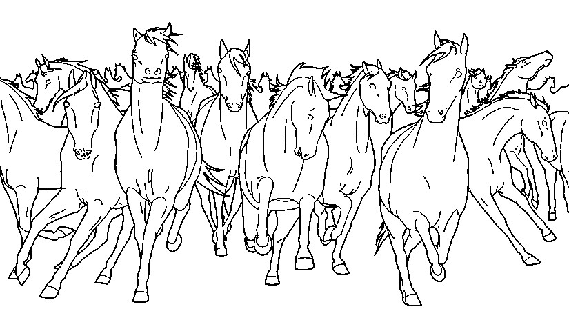 Wild Horses More Coloring Pages