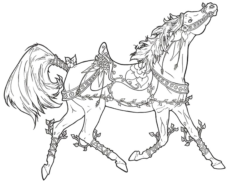 Adult Coloring Pages Horses