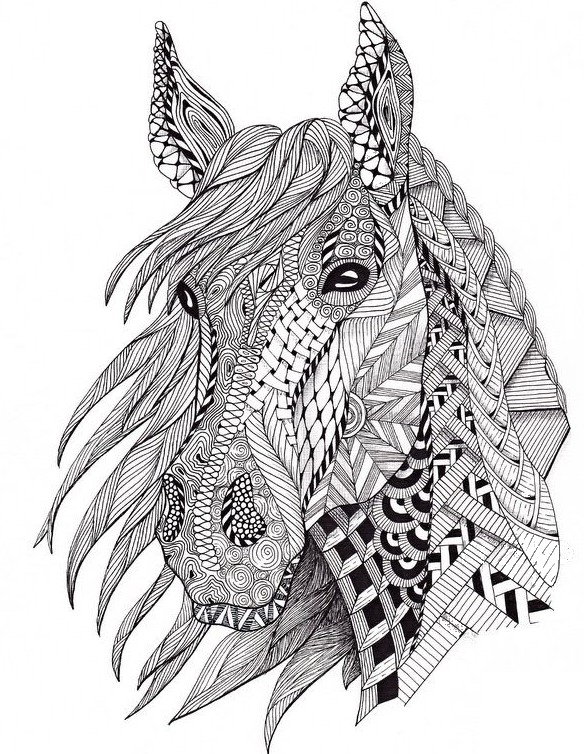 Anti Stress Coloring Pages Horses