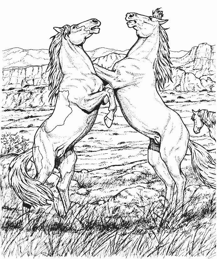 Art Therapy Coloring Page Horses Horses On