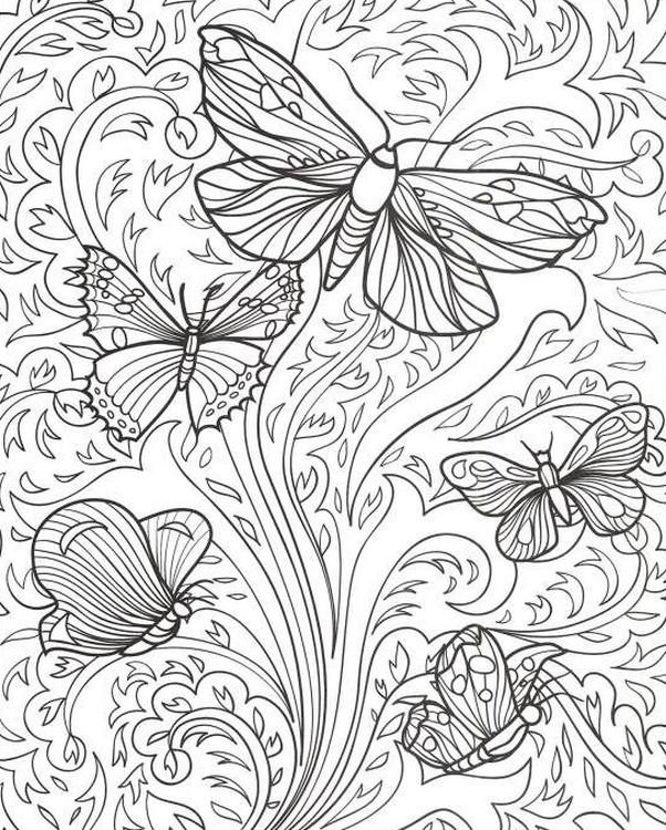 Disegni Da Colorare Per Adulti Farfalle