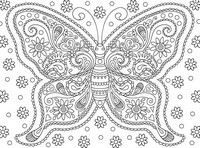 Coloriage anti-stress Papillon