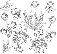 Adult coloring page Flowers: roses and lilies