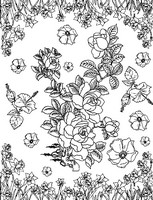 Adult coloring page Flowers: daffodils and roses