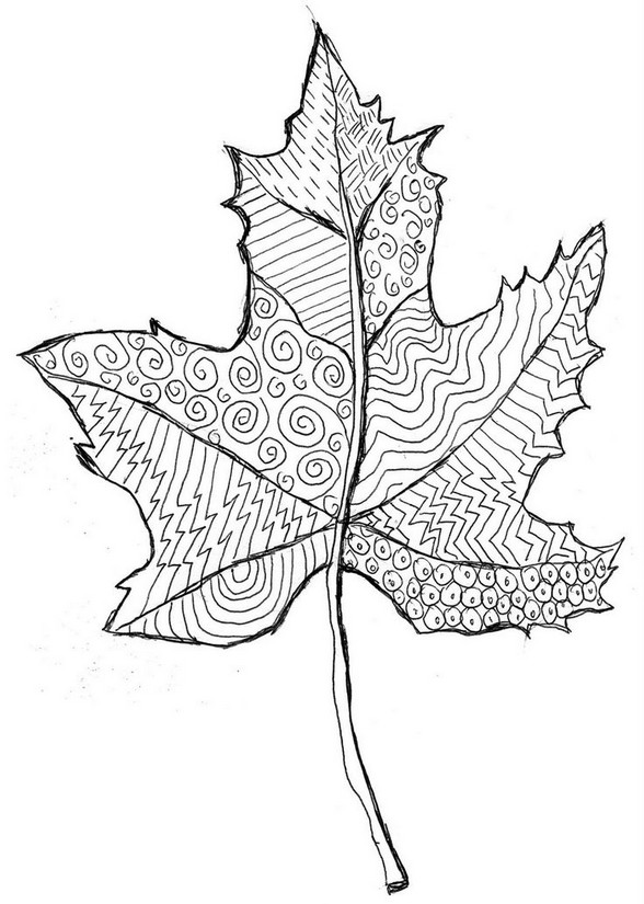 Flower Leaf Line Drawing : Coloriage anti stress automne feuille morte