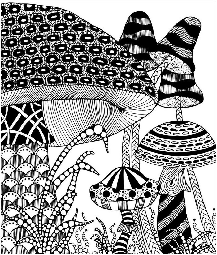 Adult Coloring Book With Quotes