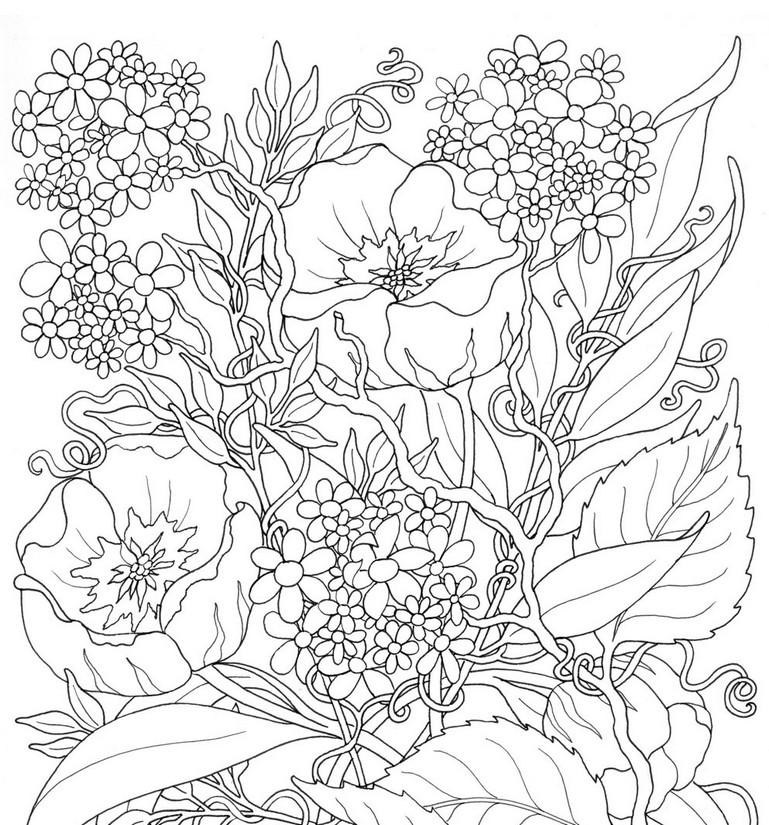 Art therapy coloring page summer flowers 3 for Summer coloring pages for adults