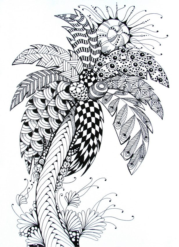 Adult coloring page summer : Palm tree 8