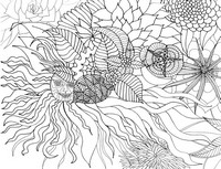 Adult coloring page Summer sun and flowers