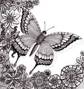 adult coloring page butterfly