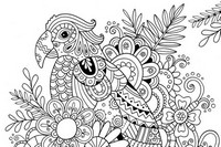 Coloriage anti-stress Perroquet