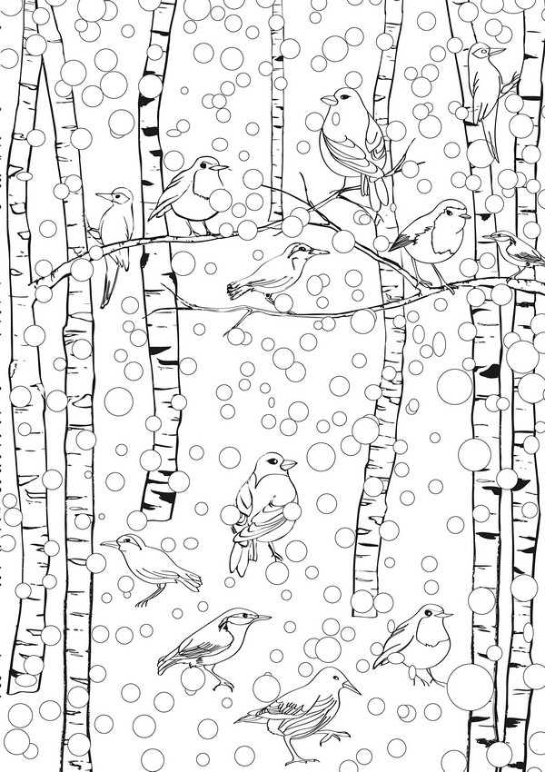 Adult Coloring Page Birds In Winter Under The Snow