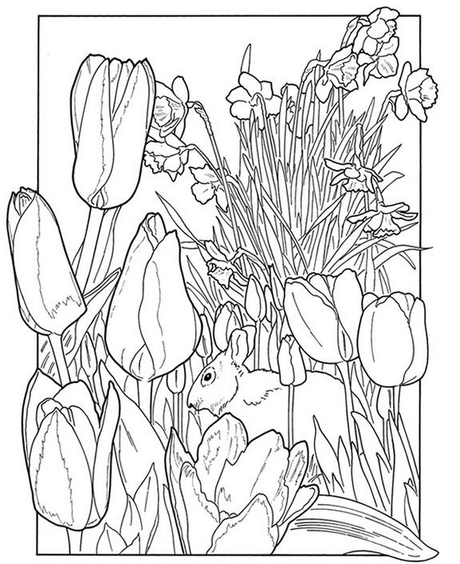 Spring Coloring Pages For Adults Pleasing Adult Coloring Pages Spring