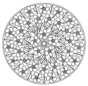 Coloriage adulte Mandala printemps