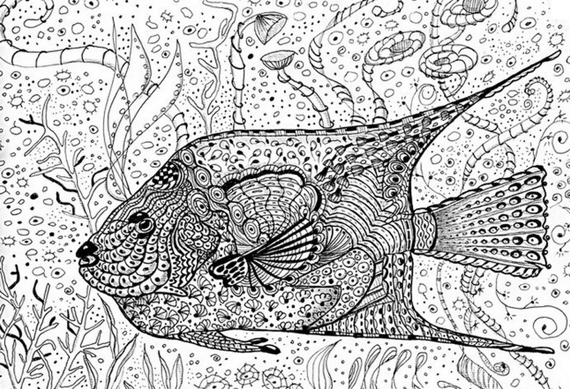 Art therapy coloring page sea fish 11 for Adult fish coloring pages
