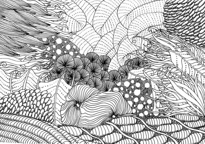 Adult coloring page sea Sea bed 7