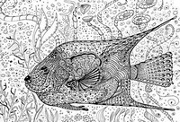 Coloriage adulte Poisson