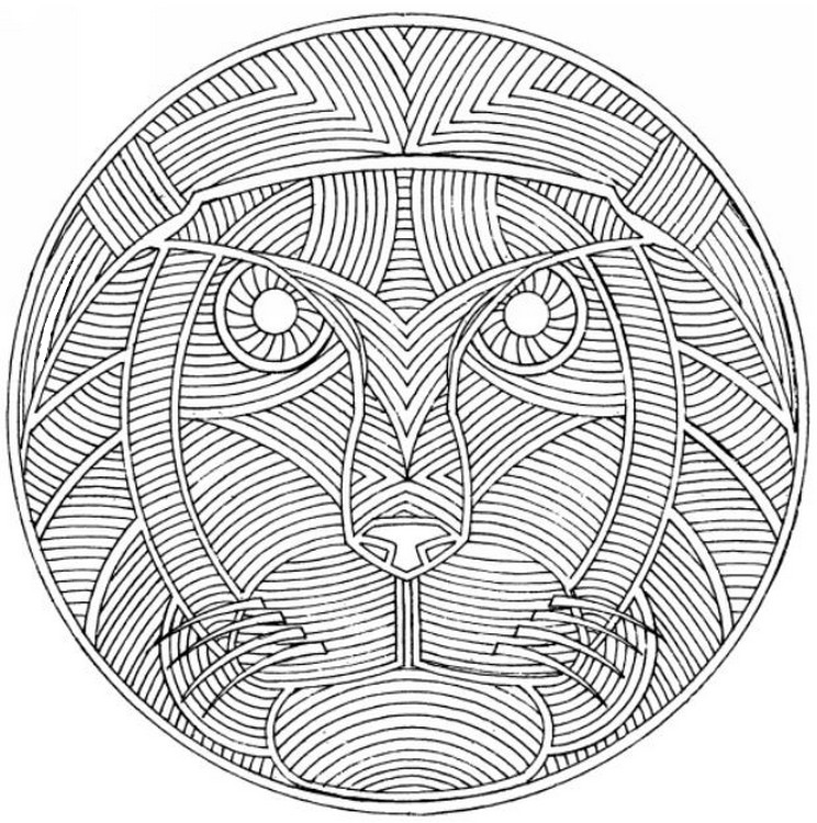 Adult coloring page africa Lion 7
