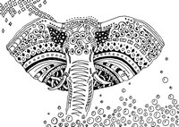 Coloriage adulte Elephant