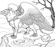 Coloriage adulte Griffon