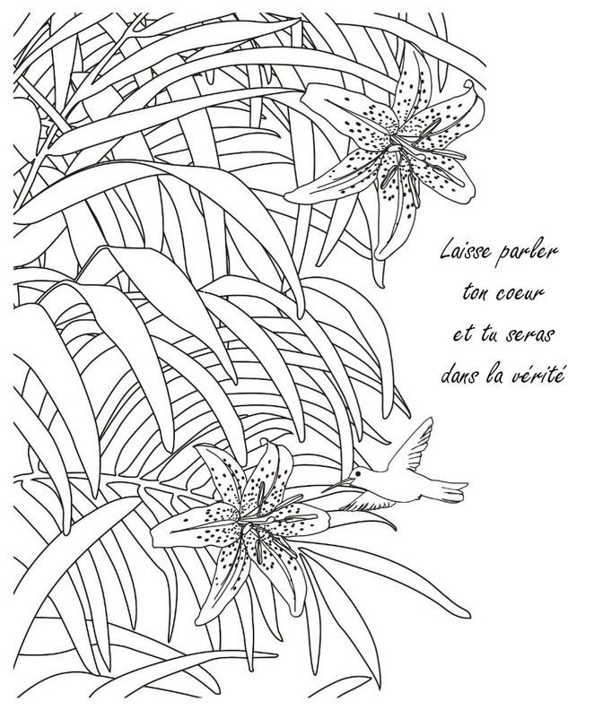 Coloriage Anti Stress Citations Zen Laisse Parler Ton